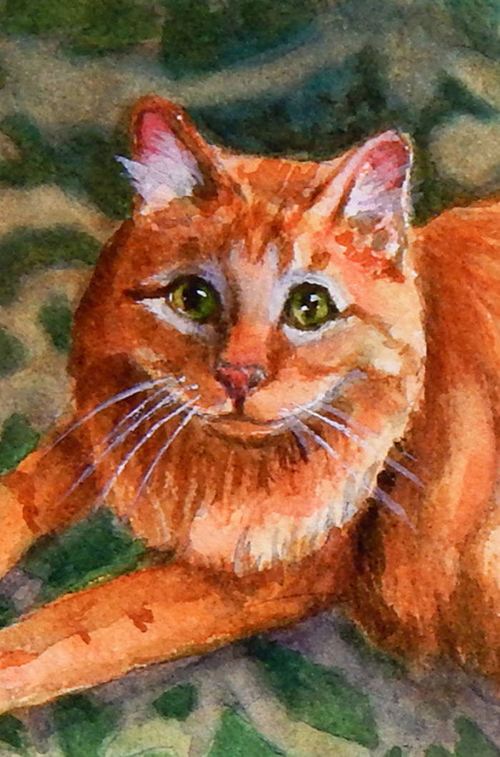 Orange Cat Art